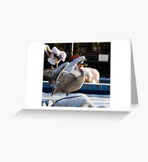 Yawning pelican Greeting Card