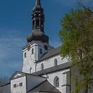 The Gothic Dome Church in Tallinn, Estonia by Gerda Grice