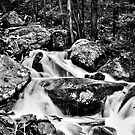 Acriggs Falls by Benjamin Young