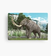 Columbian Mammoth Canvas Print