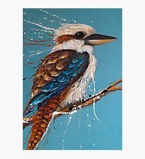 Bird Series - Kookaburra Photographic Print