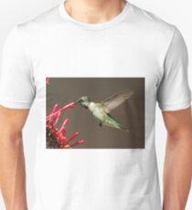 Ruby Throated Humming Bird Unisex T-Shirt