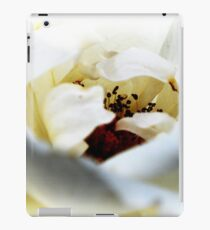 My Secret iPad Case/Skin