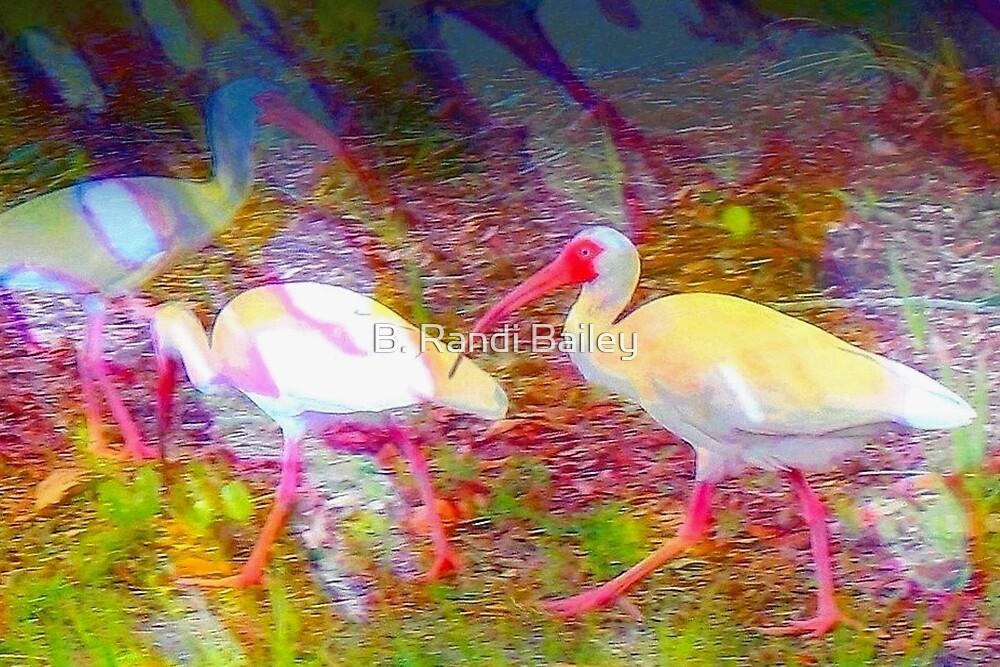 Following the flock by ♥⊱ B. Randi Bailey