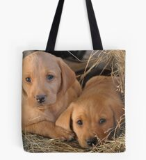 Two Brothers - Yellow Labrador Puppies Tote Bag