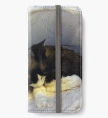 Devonshire cat asleep iPhone Wallet/Case/Skin