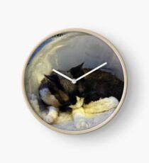 Devonshire cat asleep Clock