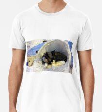 Devonshire cat asleep Premium T-Shirt