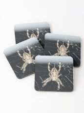 Arachnid Coasters