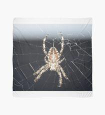 Arachnid Scarf