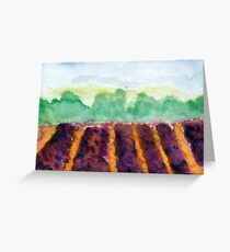 Lavendel field Greeting Card