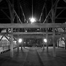 Barn Light by Brian Leadingham