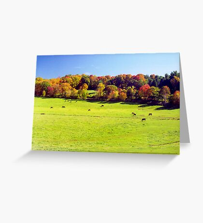 New England Autumn Meadow Greeting Card