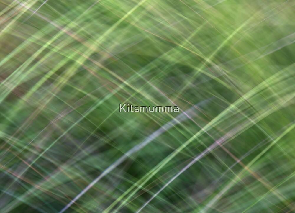 Impressionist Wild Grass by Kitsmumma