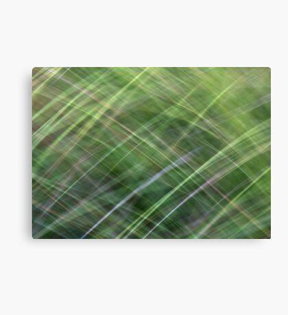 Impressionist Wild Grass Canvas Print