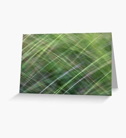 Impressionist Wild Grass Greeting Card