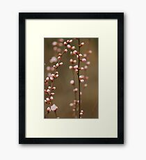 spring series two Framed Print