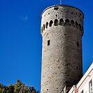 Tall Hermann, Tallinn, Estonia by HeatherMScholl