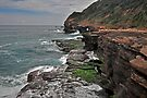 Rocky Headland by Terry Everson