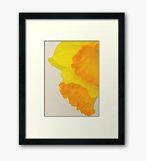 Canvas Framed Print