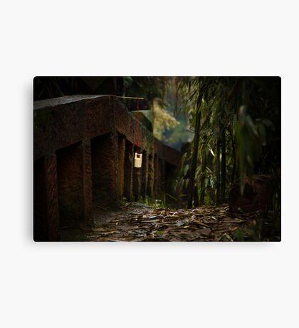 bamboo sea ... Canvas Print