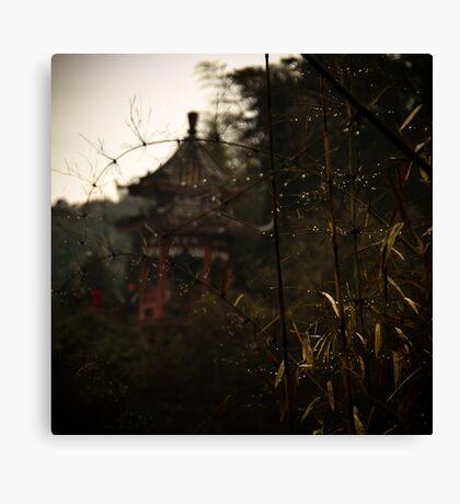 bamboo sea .... Canvas Print