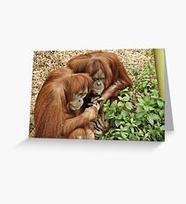 Les Deus Amanz Greeting Card