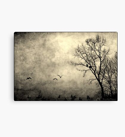 Birds of Hatzic Canvas Print
