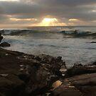 Seascape Calling - Casa Beach, CA by Anna Lisa Yoder