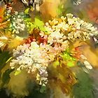 White lilacs abstract by Tummy Rubb Studio