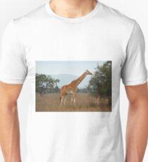 Rothschild's Giraffe Feeding, Lake Nakuru, Kenya Unisex T-Shirt