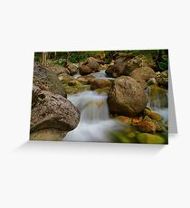 Even Flow...Eurobodalla, MT Buffalo. Greeting Card