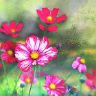 Wild flowers -  hot pink by Tummy Rubb Studio