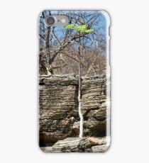 Struggling Tree, Namibia iPhone Case/Skin