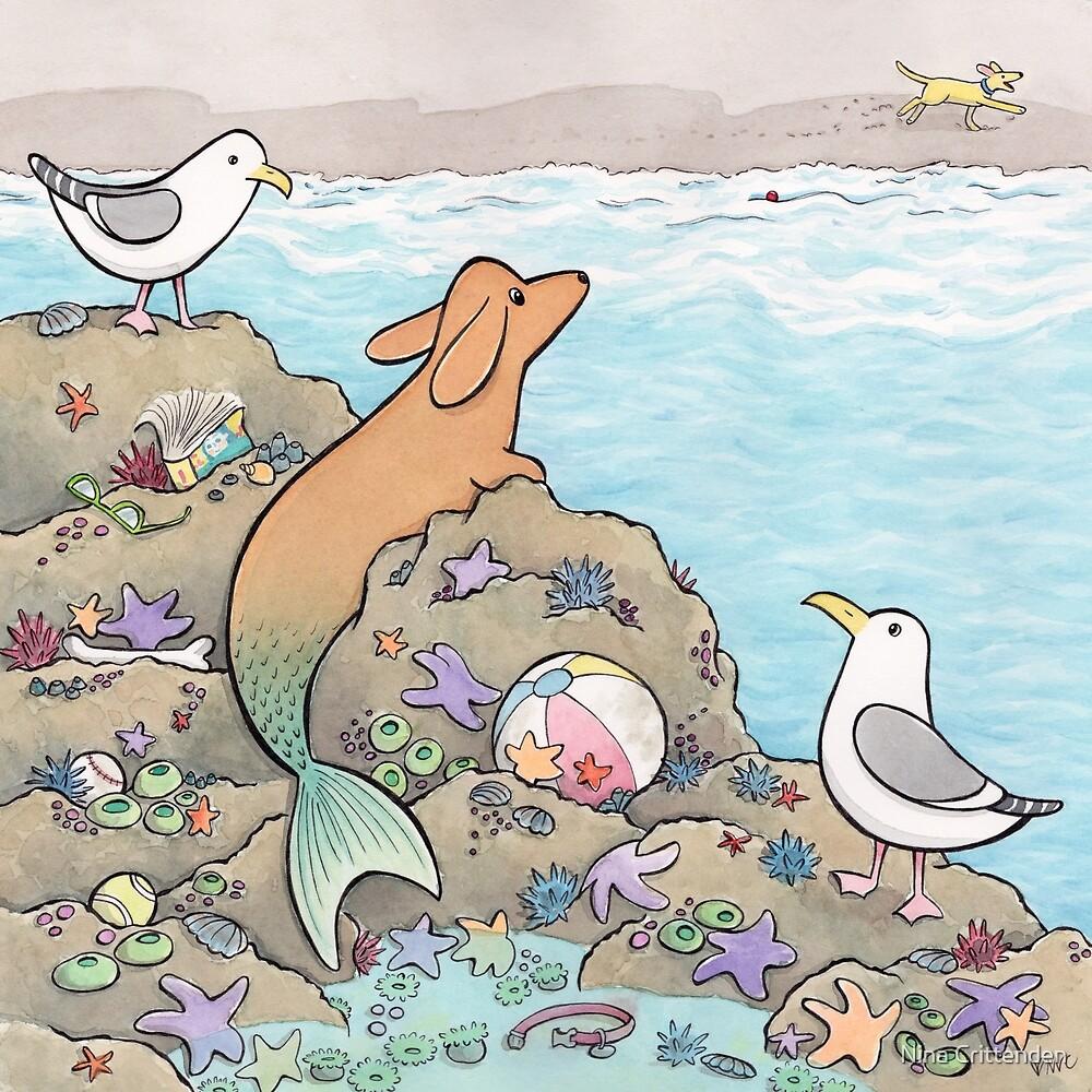 The Merdog by Nina Crittenden