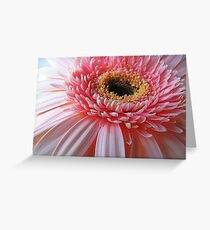 Up Close And Pink Greeting Card