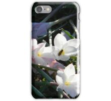 Broken Flowers, Vandalism iPhone Case/Skin