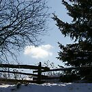Still Winter.... a March Image... by Larry Llewellyn