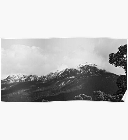 Mount Wellington From West Hobart Poster