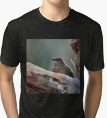 Hide and seek. Eurasian blackbird Tri-blend T-Shirt