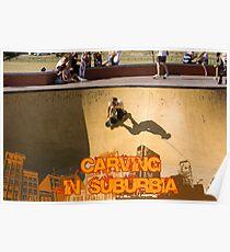 Skateboarding In Suburbia Poster
