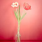 Tabletop Tulips by eyeshoot