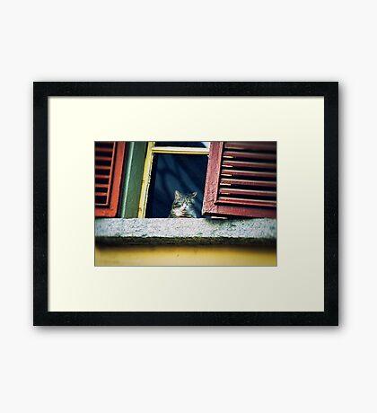 The world outside Framed Print