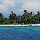 Kanapu Shoreline by Reef Ecoimages