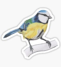 Bluetit 1/4 Sticker