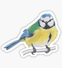 Bluetit 2/4 Sticker