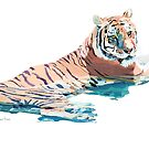 Tiger No.2 by christinahewson