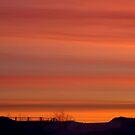Morning Colors! by PatChristensen