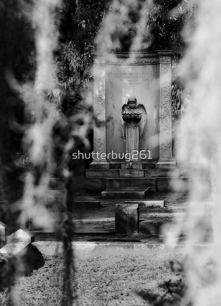 life & soul by shutterbug261