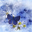 Little Blue by swaby